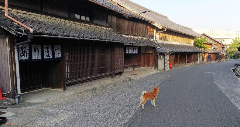 伝統的建造物群保存地区 愛知県 名古屋市(緑区) 有松 染織町