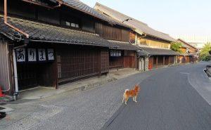 伝統的建造物群保存地区 愛知県名古屋市(緑区) 有松 染織町