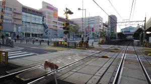 名古屋鉄道 名古屋本線 有松駅 ロータリー