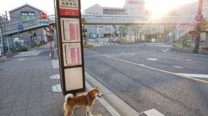 名古屋鉄道 名古屋本線 有松駅 踏切